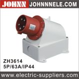 IP44 5p 63A Surface Mounted Plug for Industrial with Ce Certification