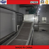 Conveyor Belt Dryer