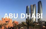 Qingdao to Abu Dhabi Shipping by Ocean FCL