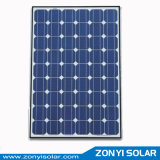 3W-300W Monolycrystalline Solar Panel with High Quality