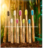 Wooden Bamboo Handle Toothbrushes