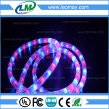 IP65 Round 2 Wire High Voltage Christmas LED Rope Light