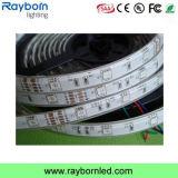 Holiday Decoration Flexible SMD5050 30LEDs/M 60LEDs/M LED Strip Light