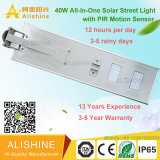 40W High Quality Solar Energy LED Street Light with Competitive Price