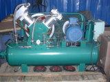 Oil Free Methane Gas Compressor