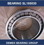 Double Row Full Complement Cylindrical Roller Bearings SL185030
