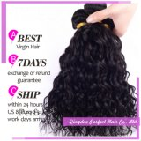 Most Popular Products Brazilain Hair Extension Salon Products