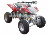 200cc EEC ATV / Quad (DP-ATV200(EEC)-J)