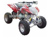 200cc EEC ATV / Quad (DP-ATV200(EEC)-J)