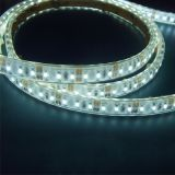 SMD5050 120LEDs Water Proof IP65 LED Flexible Strip Light