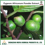 Pure Natural Pygeum Africanum Powder Extract with Phytosterols 2% - 13%
