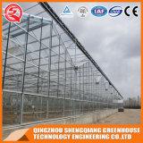 2017 Steel Frame Multi-Span Glass Greenhouse