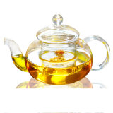 Hot Selling Clear Glass Bottle /Tea Pot for Tea