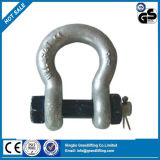 Us Type Anchor with Screw Pin G2130 Shackle