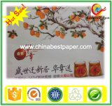Double Side PE Coated Paper