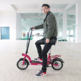 300W Big Power Brushless Motor Adult Foldable Electric Scooter