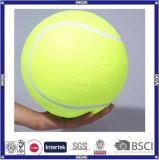 2016 Hot Sale Cheap and Colorful Big Tennis Ball