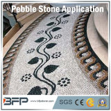 Hot Sale Snow White Pebble/River Stone Widely Used in Floor, Wall, Swimming Pool