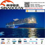 Shipping Rates / Sea Freight From China to Worldwide/San Lorenzo