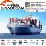 FCL and LCL Ocean Shipping From China Ningbo to Valencia, Barcelona Spain (SEA FREIGHT)