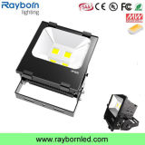 Outdoor Light IP65 LED Flood Light 100W with Bridgelux