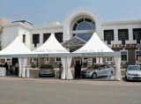 4m X 4m Pagoda Tent for Production Advertisement and Promotion