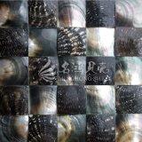 Black Lip Mop Shell 60*60mm Mosaic Tile