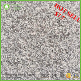 Our Own Quarry Light Grey Competitive Price G603 Granite