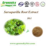 Natural High Quality Sarsaparilla Root 10: 1 Extract Powder