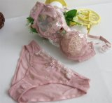 Wholesale Transparent Lace Bra Sets for Sexy Ladies (FYB1015)