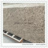Giallo Ornamental Granite Slabs for Countertops and Tiles