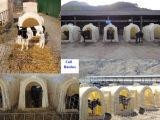 Calf Hutches on Sale