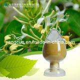 Green Coffee Bean Extract 25% 50% 98% Chlorogenic Acid