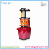 Korea Slow Juicer/ Juice Machine