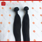 Double Drawn Body Wave Brazilian Human Hair Bundle