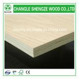 Furniture Use Plywood Made in China Shengze Wood