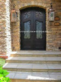 Traditional Design Aged Bronze with Low-E Glass Residential Iron Doors