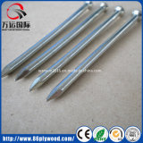 """1/2"""" to 8"""" Bright Steel Nail Common Wire Nails"""