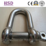 Ss316 European Large Dee Shackle, Nickle 10%-12%