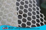 China Plastic Net Manufacturer Hot Sales