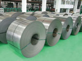 Regular Spangle Galvanized Steel Coil (Hot dipped) From China Manufacturer