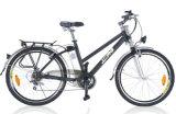 Classic Man Style Electric Bike-Tde92z