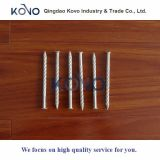 """3"""" Galvanized Asbesto Roofing Nails for Africa"""