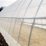 Agriculture Insect Proof Net/Plastic Insect Screen for Greenhouse Factory