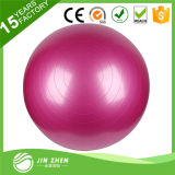 Professional Grade Exercise Ball Gym Ball