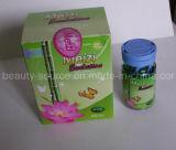Meizi Evolution Botanical Weight Loss&Slimming Soft Gel