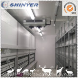 Refrigeration Cold Storage by Size Customized