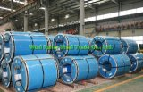 Deep Drawing 201 Stainless Steel Coil in Stocks Short Delivery