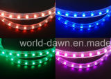 Ce EMC LVD RoHS Two Years Warranty, Flexible LED Strip Light / LED Rope