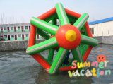 Inflatable Water Walking Roller Zorb Ball for Water Sports (CYWG-1531)